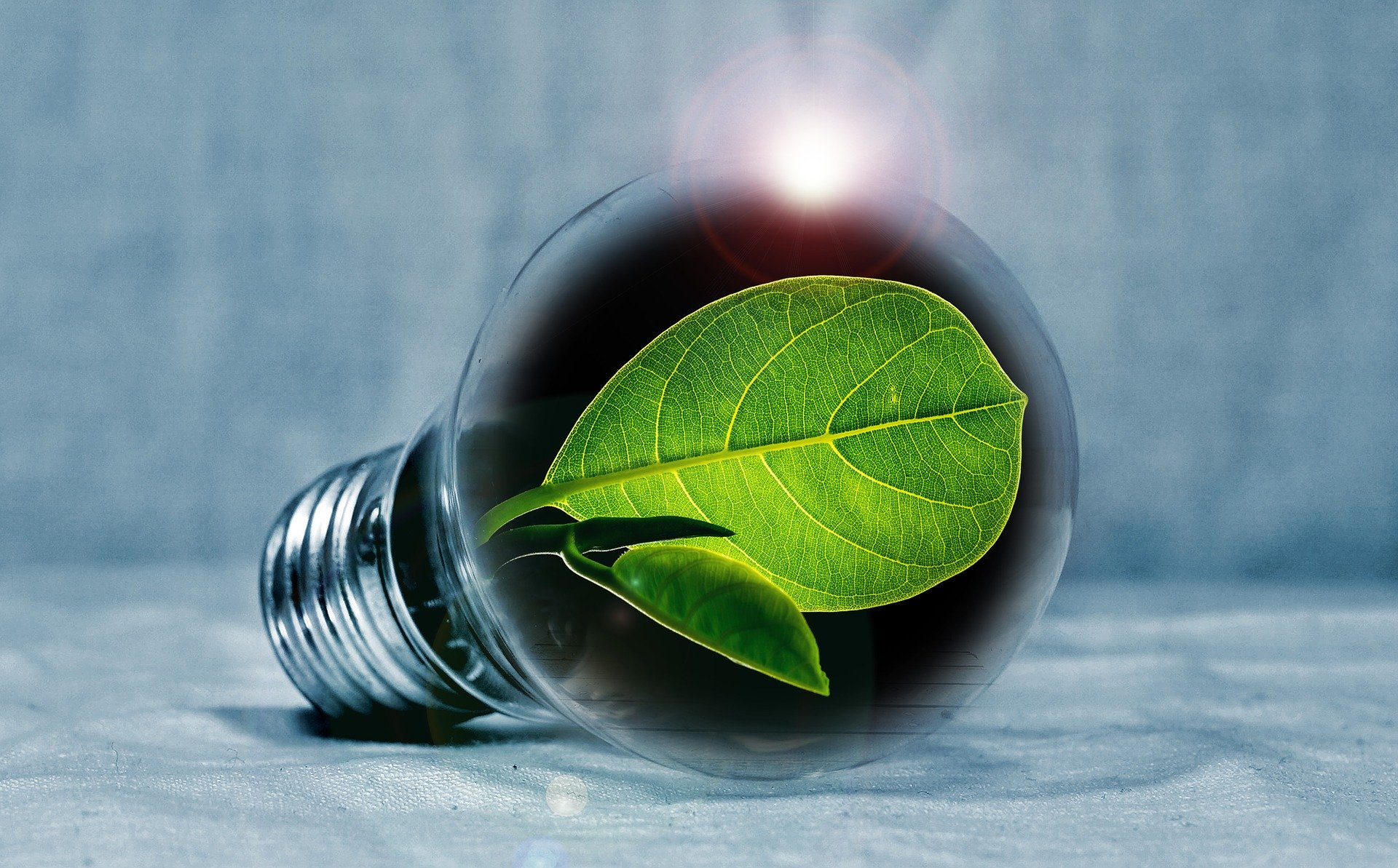 ENERGY EFFICIENCY SOLUTIONS FOR YOUR PROPERTY